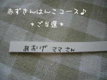kinennpure3.jpg