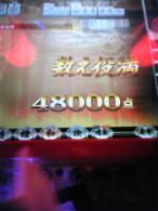 DVC00001_20090425114856.jpg