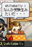 Maple2168@.jpg