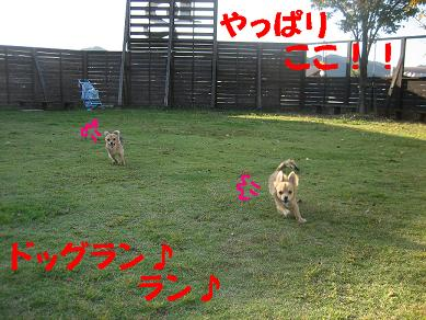 IMG_9283am.jpg