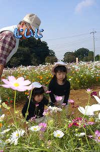 20061109133450.jpg