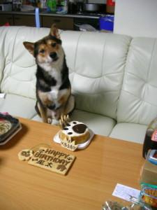 風太・3歳の誕生日♪