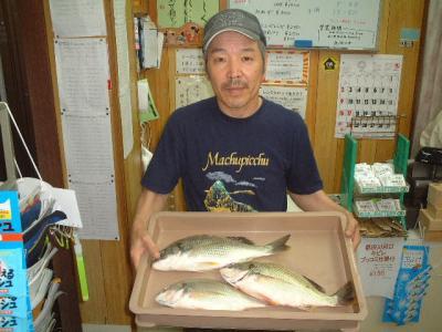 02.wakino.jpg