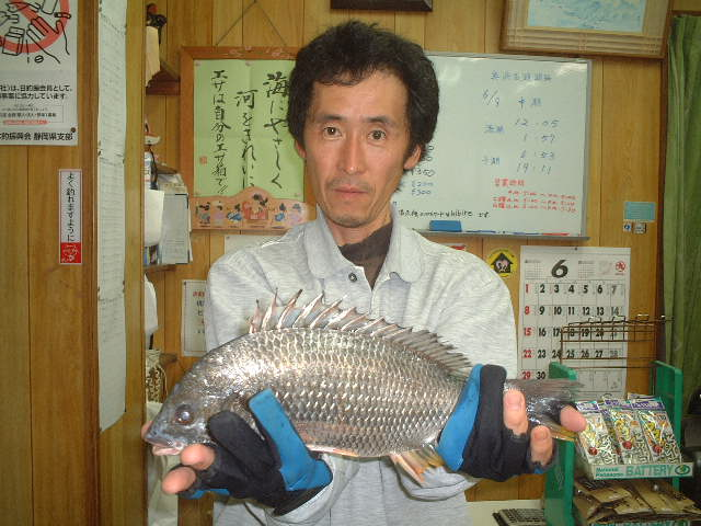 08fujisawa.jpg