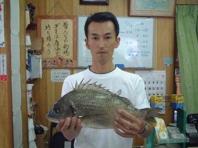 11hirashiba.jpg