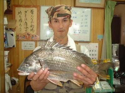 14hirashiba.jpg