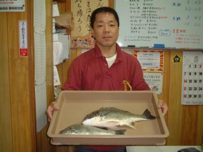 28nozawa.jpg