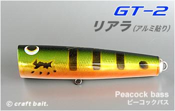 gt2_19.jpg