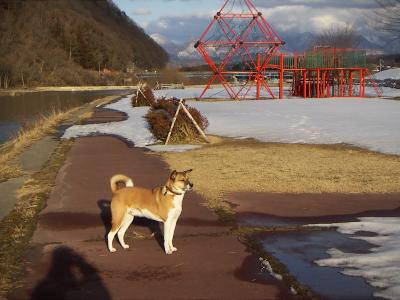 折橋公園 タロウ