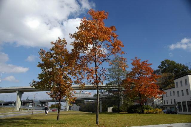 2008-10-27_02-15-07.jpg