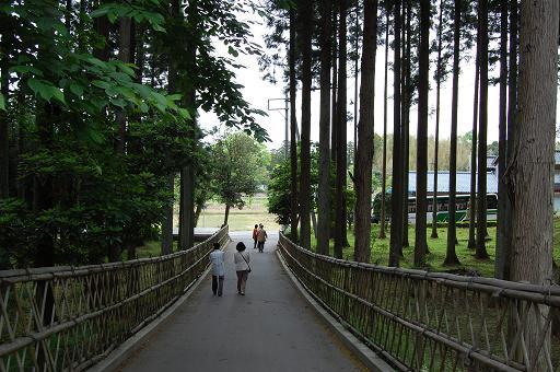 妙宣寺の参道