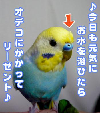 una0526_01.jpg