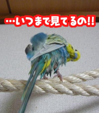 una0527_05