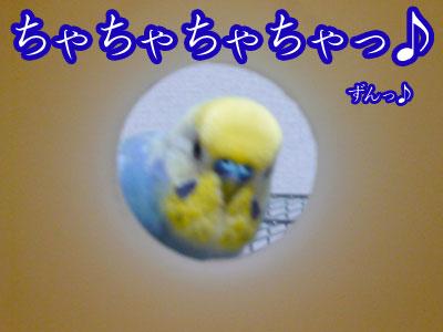 una0606_07.jpg