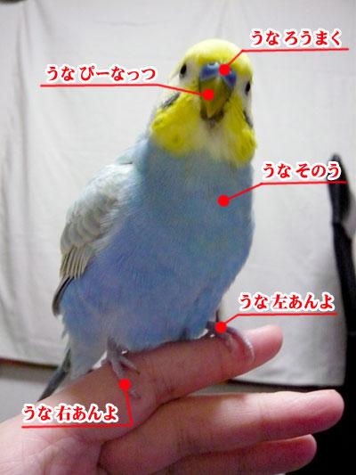 una0610_01.jpg