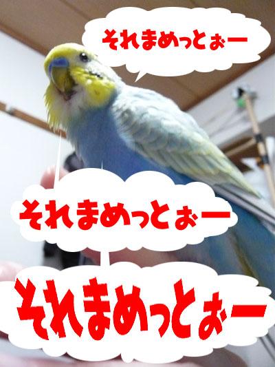 una0620_03.jpg