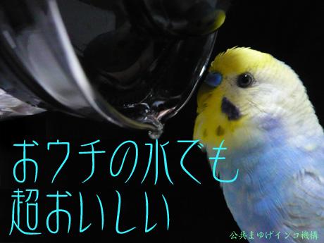 una0706_04.jpg
