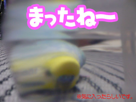 una0711_06.jpg