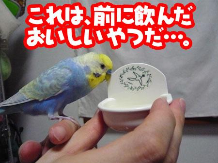 una0719_03.jpg
