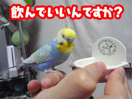 una0719_04.jpg