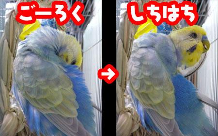 una0721_10.jpg