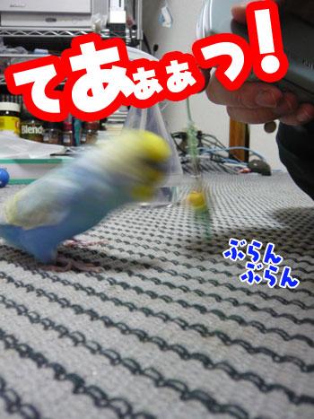 una0724_05.jpg