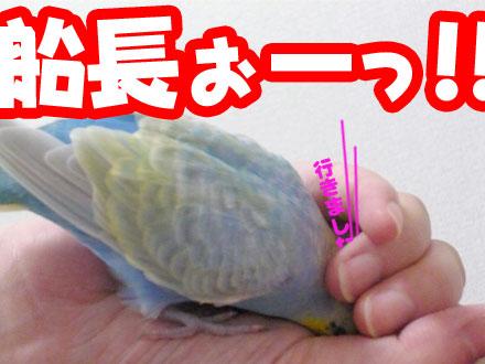 una0804_09.jpg
