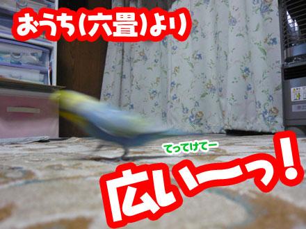 una0820_07.jpg