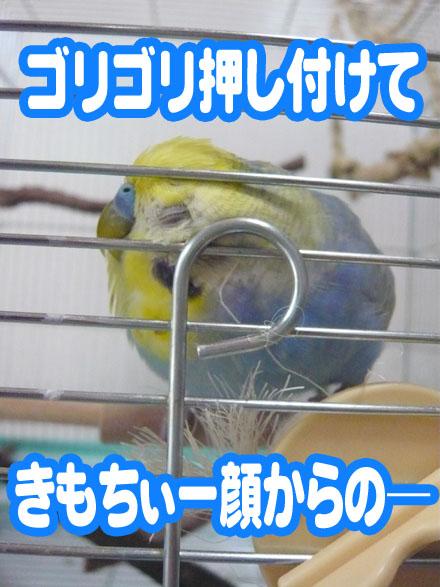 una0830_08.jpg