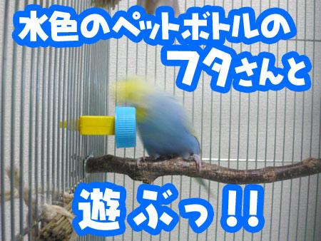 una_0809_02.jpg