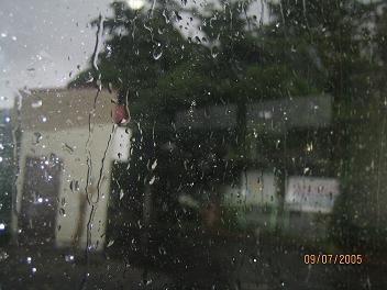 雨は夜更け杉に