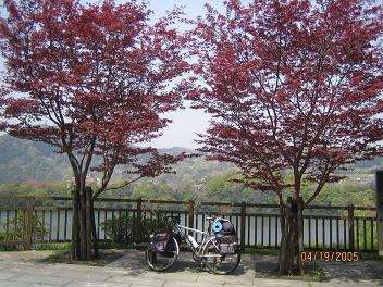 相模湖(神奈川県)