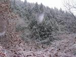 あっという間に雪景色