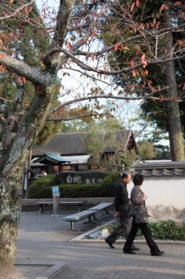 KikkouPark0022.jpg