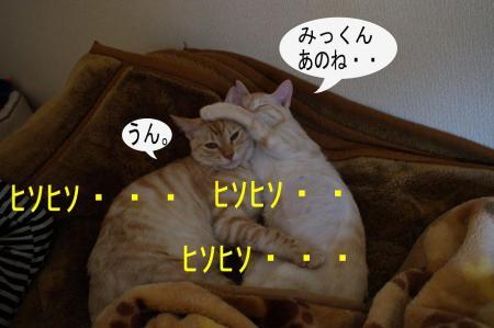 1_20090408225626.jpg