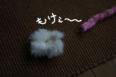 1_20090628193645.jpg