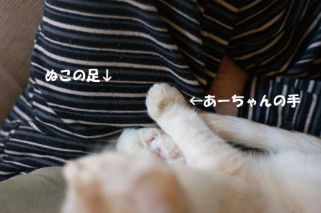 2_20090429105941.jpg