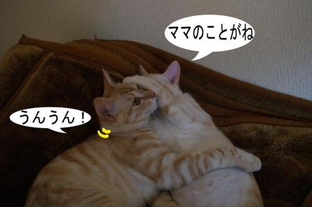 4_20090408225627.jpg
