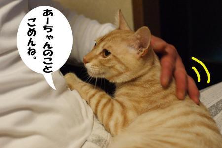 9_20090425194959.jpg