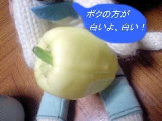 20090630chamyu-1