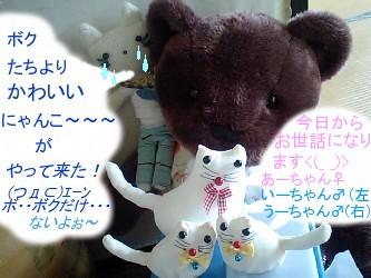 20090704kazokukanyuu