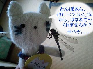 oniyanma2009-1