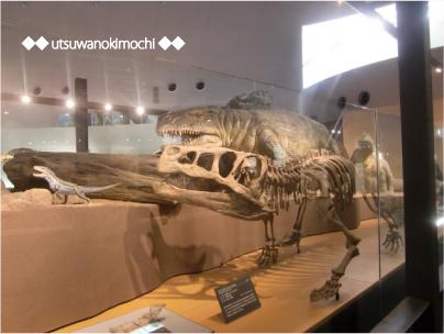 恐竜博物館_1