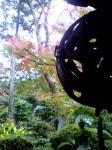 紅葉始まる。