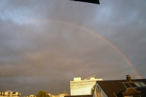 Over the Reinbow!