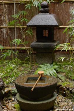 雨の中庭-縦