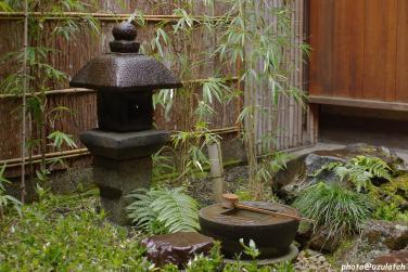 雨の中庭-全体