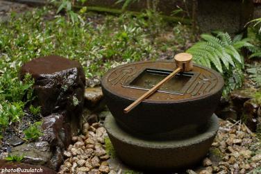 雨の中庭-水鉢