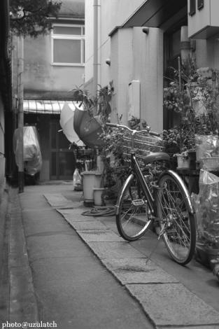 路地裏の自転車