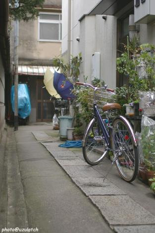 路地の自転車col